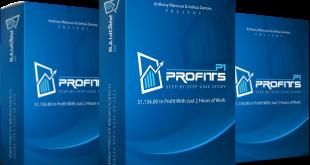 P1 Profits Case Study